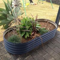 oblong-garden-beds