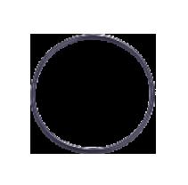 r-series-o-ring